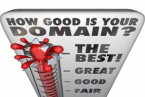 How Good Is Your Domain Name?